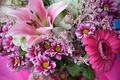 Picture chrysanthemum, bouquet, Lily, gerbera