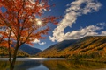 Picture clouds, autumn, New Hampshire, lake, New Hampshire, tree, White Mountains, White Mountains, Echo Lake, Echo ...
