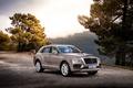 Picture forest, car, Bentayga, mountains, Worldwide, Diesel, Bentley