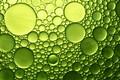 Picture water, macro, bubbles, oil