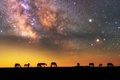 Picture silhouettes, stars, horse, the sky, the milky way, night, the evening