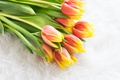 Picture tulips, petals, flowers