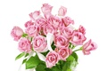 Picture bouquet, roses, roses, flowers, pink