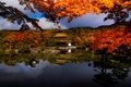 Picture autumn, trees, branches, lake, house, Japan