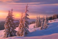 Picture winter, the sun, clouds, snow, sunset, mountains, hills, beauty, the evening, ate, slope, frost, shadows, ...