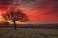 Picture Great Britain, church, Belton, St John the Baptist, Leicestershire, sunrise