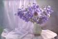 Picture bells, fabric, bouquet, lilac, summer