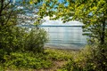 Picture summer, the sun, trees, river, Germany, coast, Germany, rivers, branches, Stetten