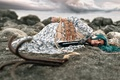 Picture girl, sleep, sailboat, ships, Sasha Ivashchenko