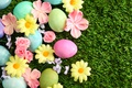 Picture grass, Easter, Easter, flowers, Happy, spring, eggs, flowers